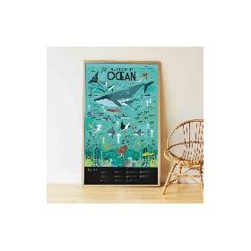 Poppik Les Océans Poster...