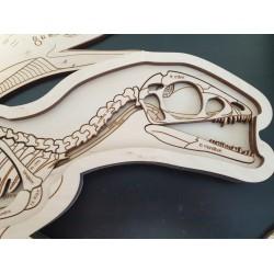 Stuka Puka Puzzle en Bois Anatomie du Dinosaure