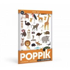 Poppik découvre la couleur...